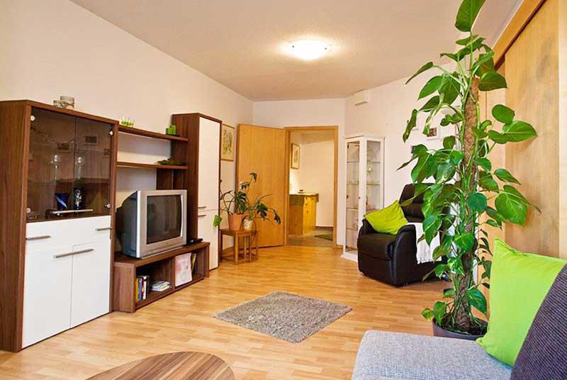 Sử dụng cây xanh cho phòng khách