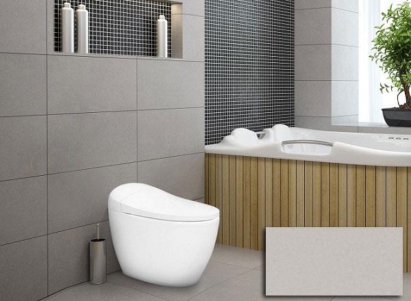 20+ mẫu gạch ốp nhà vệ sinh 30x60 đẹp & Cách chọn hiệu quả 7